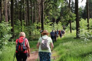 Zeitreise zur Burg Schellenberg, OVIGO 2021